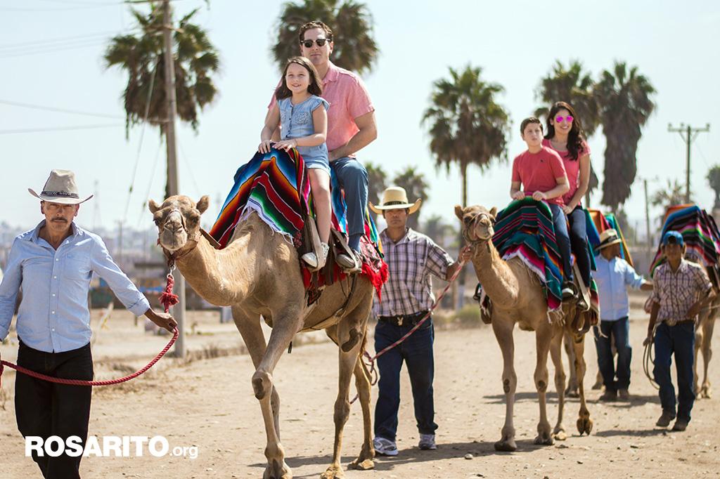 Camel Ride in Rosarito