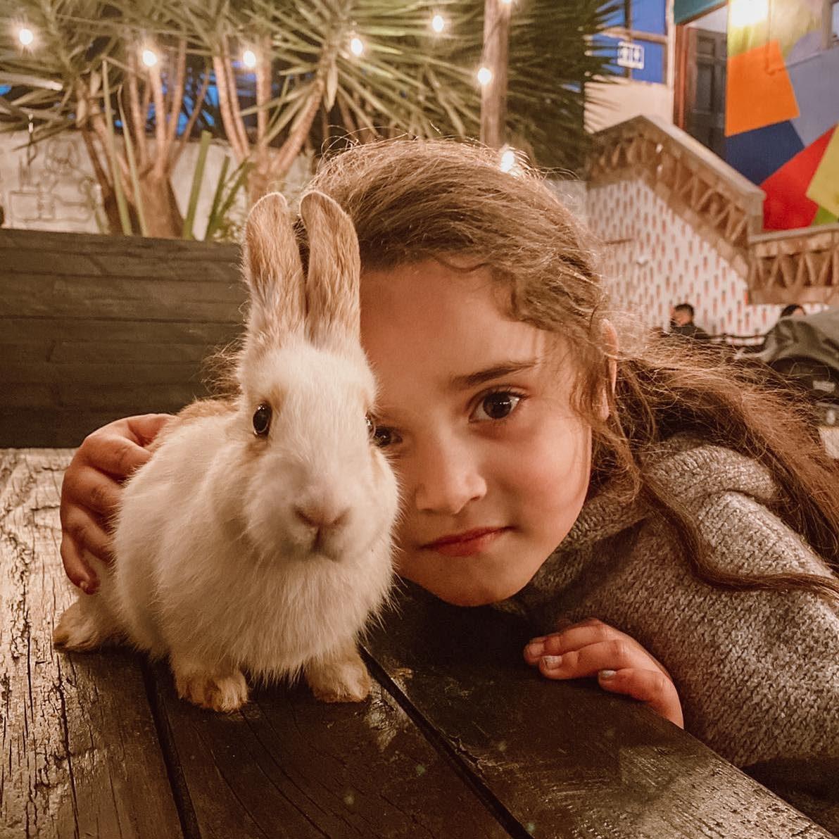 El Patio del Conejo